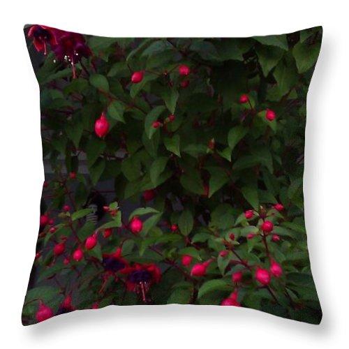 Fuschia Throw Pillow featuring the photograph Fuschia Tree by Sandra Maddox