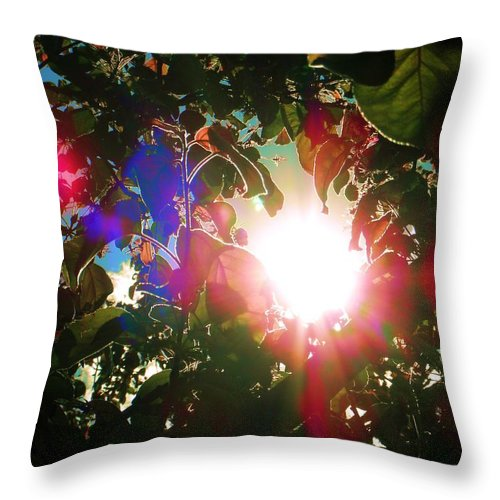 Garden Throw Pillow featuring the photograph Garden Cover by Susan Carella