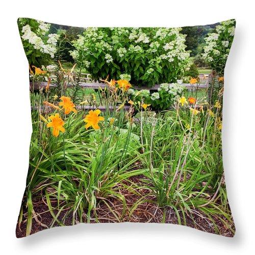 Garden Throw Pillow featuring the photograph Garden Delight by Madeline Ellis