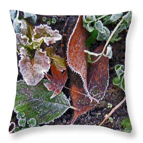Frost Throw Pillow featuring the photograph Garden Frost by Ellen Miffitt