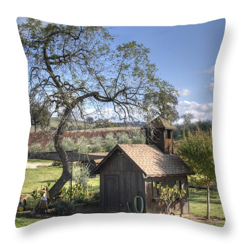 Landscape Throw Pillow featuring the photograph Garden Shed by Diego Re
