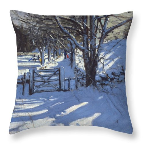 Countryside Throw Pillow featuring the painting Gate Near Youlgreave Derbyshire by Andrew Macara