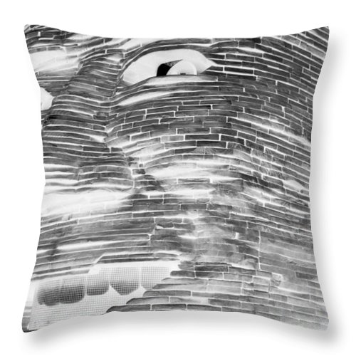 Architecture Throw Pillow featuring the photograph Gentle Giant In Negative Black And White by Rob Hans