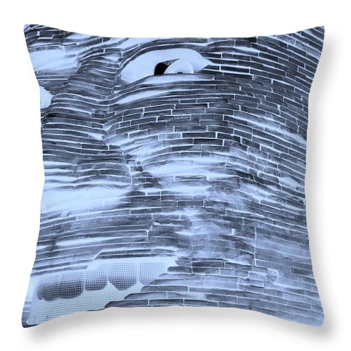 Architecture Throw Pillow featuring the photograph Gentle Giant In Negative Cyan by Rob Hans