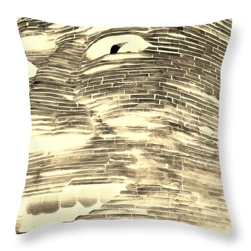 Architecture Throw Pillow featuring the photograph Gentle Giant In Negative Sepia by Rob Hans