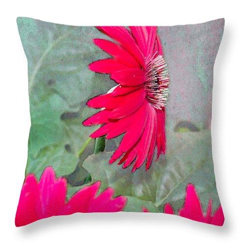 Gerbera Daisy Throw Pillow featuring the photograph Gerbera Daisies by Betty LaRue