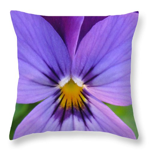 Flower Throw Pillow featuring the photograph Glamorize by Tina Marie