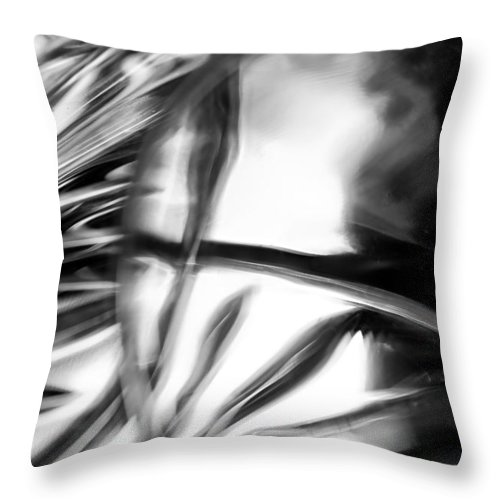 Glasswork Throw Pillow featuring the photograph Glasswork Series 1 #2 by Tim Nault