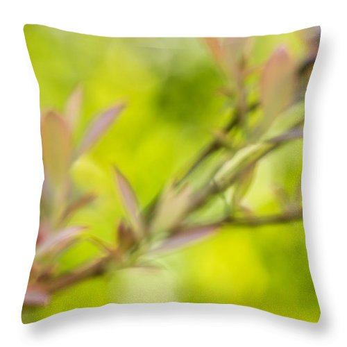 Throw Pillow featuring the photograph Glimpse Of Spring by Heidi Smith