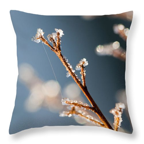 Ice Throw Pillow featuring the photograph Glistening Ice Crystals by Kathy Clark