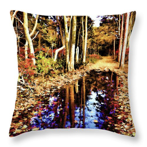 Autumn Throw Pillow featuring the photograph Glowing Beauty by Lourry Legarde