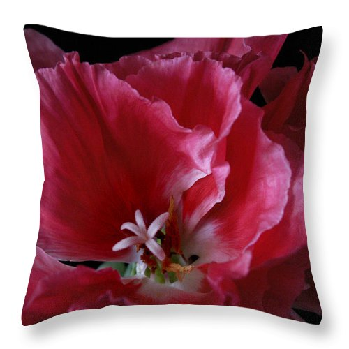 Flower Throw Pillow featuring the photograph Godieta Flower Detail by Nancy Griswold