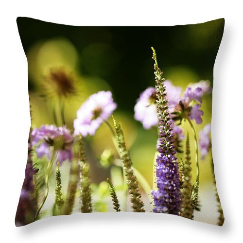 Garden Throw Pillow featuring the photograph God's Masterpiece by Bonnie Bruno