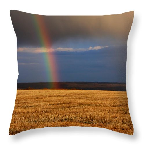 Rain Throw Pillow featuring the photograph Gold At The End Of The Rainbow by James Anderson