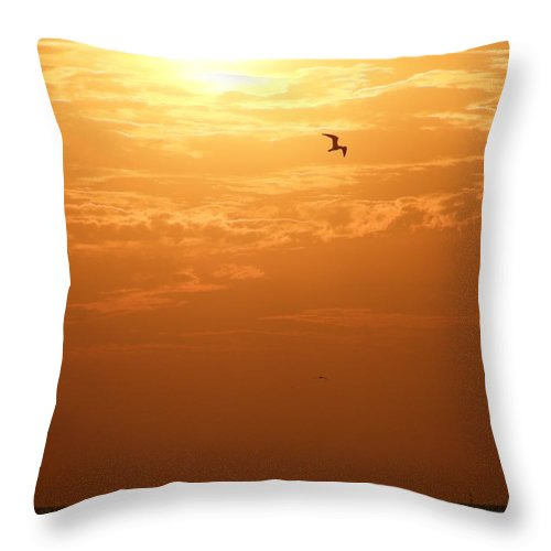Sunset Throw Pillow featuring the photograph Golden Flight by Kimberly Mohlenhoff