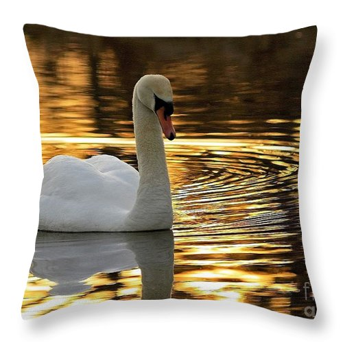 Golden Moments Throw Pillow featuring the photograph Golden Moments by Inspired Nature Photography Fine Art Photography