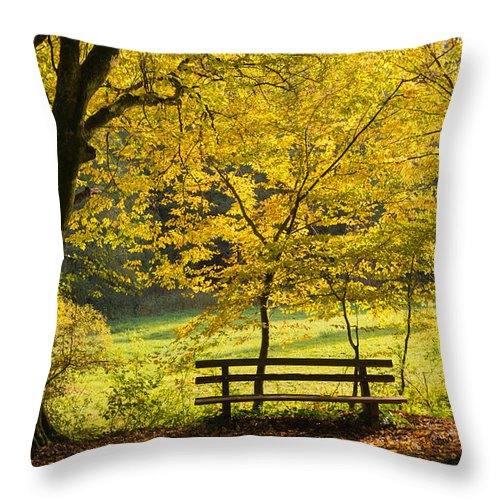 Fall Throw Pillow featuring the photograph Golden October - Bench And Yellow Trees In Fall by Matthias Hauser