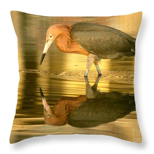 Birds Throw Pillow featuring the photograph Golden Reflection by Myrna Bradshaw