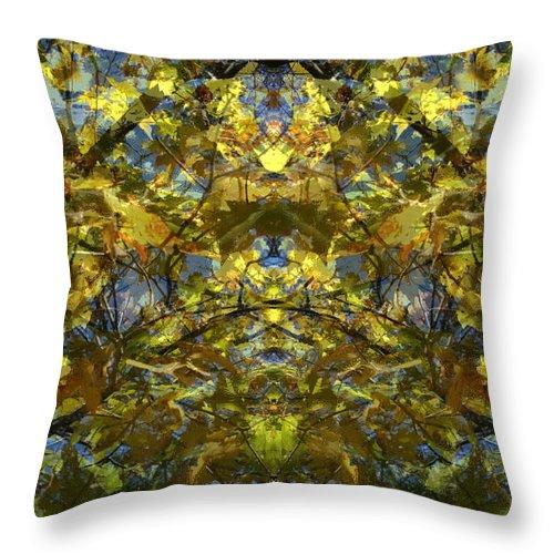 Golden Rorschach Throw Pillow featuring the photograph Golden Rorschach by Seth Weaver
