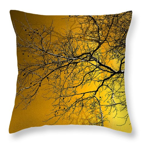 Golden Walnut Tree Throw Pillow featuring the photograph Golden Walnut Tree by Heinz G Mielke