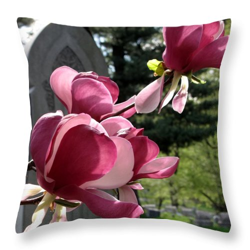 Graveyard Throw Pillow featuring the photograph Graceful Abundance by Michele Nelson