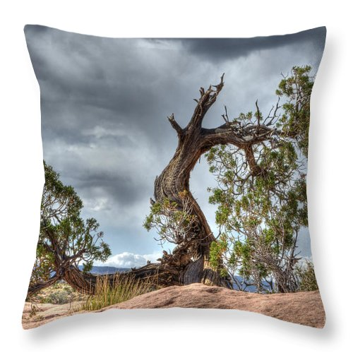 Grand Canyon Throw Pillow featuring the photograph Grand Canyon Facing The Storm by Bob Christopher