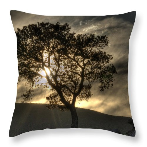Grand Canyon Throw Pillow featuring the photograph Grand Canyon Into The Mystic by Bob Christopher