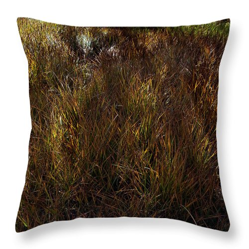 Grasslands Throw Pillow featuring the photograph Grassland In Late Afternoon by Mark Ivins