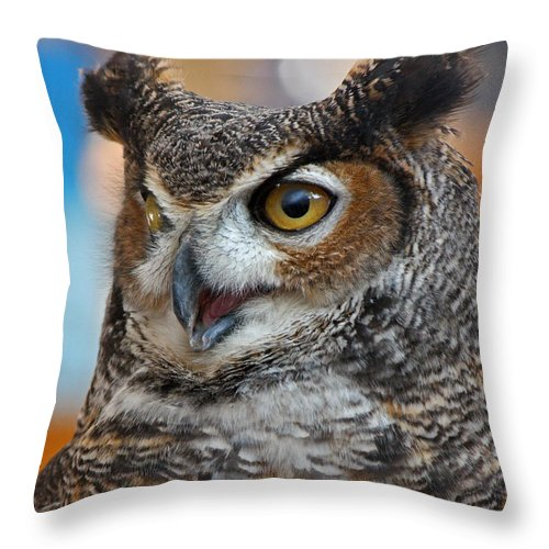 Owl Throw Pillow featuring the photograph Great Horned Owl Portrait by Lloyd Alexander