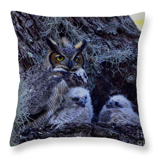 Great Horned Owls Throw Pillow featuring the photograph Great Horned Owl Twins by Barbara Bowen