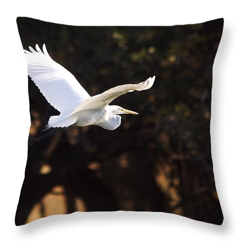 Egret Throw Pillow featuring the photograph Great White Egret Flight Series - 8 by Roy Williams