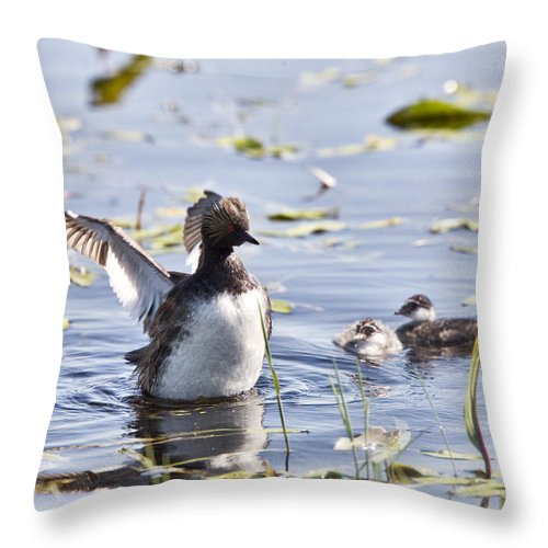 Grebe Throw Pillow featuring the photograph Grebe With Babies by Mark Duffy