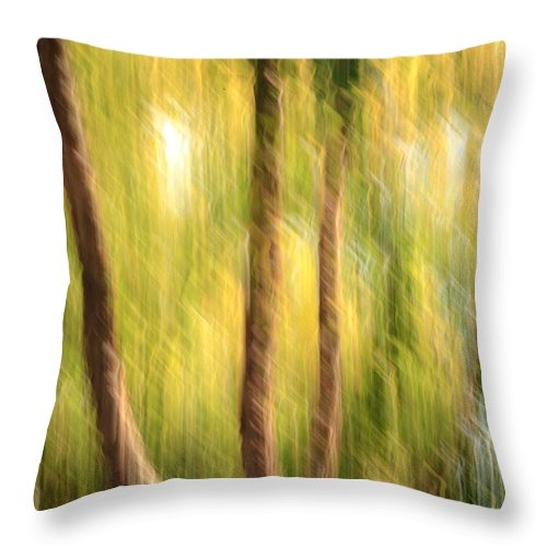 Abstract Throw Pillow featuring the photograph Green And Gold by Keith Allen