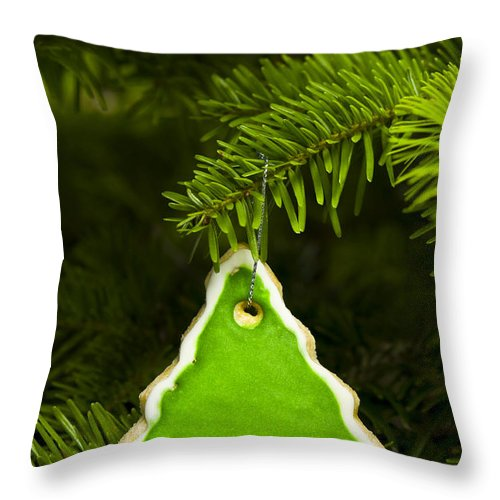 Background Throw Pillow featuring the photograph Green Branches Of A Christmas Tree by U Schade