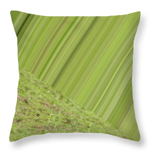 Green Throw Pillow featuring the photograph Green Design by Karol Livote