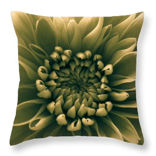 Green Flower Throw Pillow featuring the photograph Green Flower by Dawn OConnor