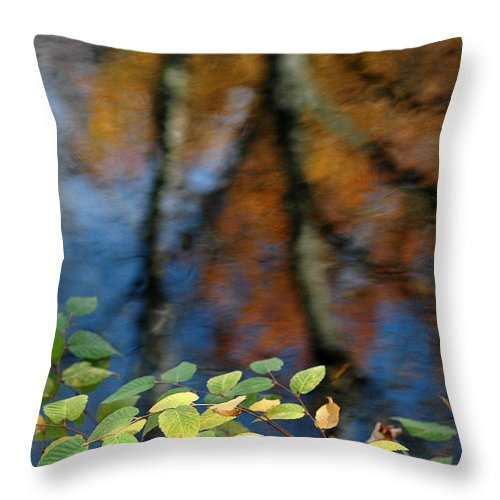 Green Leaves Throw Pillow featuring the photograph Green Leaves And Autumn Reflection by Mike Nellums
