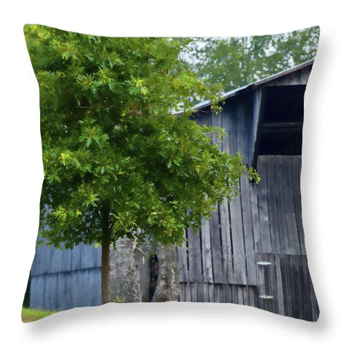 Barn Throw Pillow featuring the photograph Green N Grey by Sheri Bartoszek
