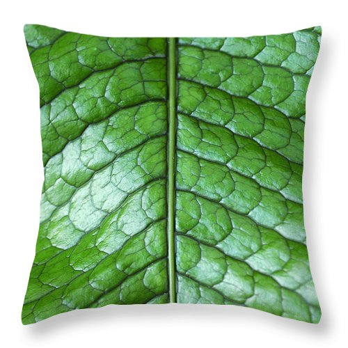Green Throw Pillow featuring the photograph Green Scaly Leaf Pattern by Mike Nellums
