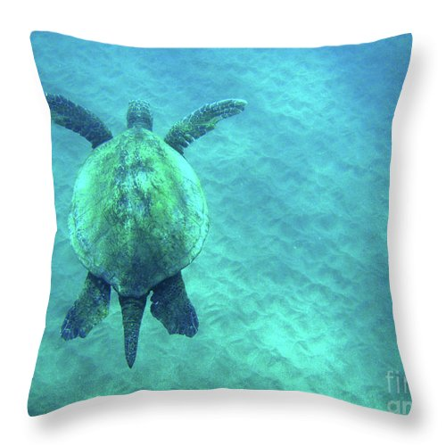 Green Throw Pillow featuring the photograph Green Sea Turtle 3 by Bob Christopher