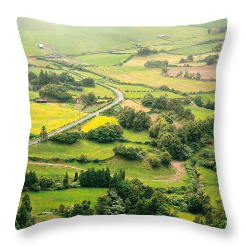 Rural Throw Pillow featuring the photograph Green Valley by Gaspar Avila