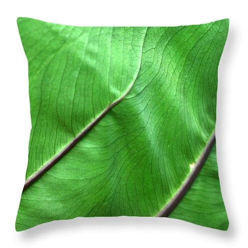 Green Throw Pillow featuring the photograph Green Veiny Leaf 2 by Mike Nellums