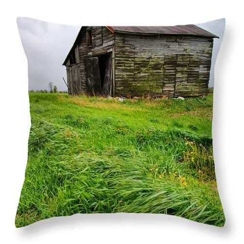 Barn Throw Pillow featuring the photograph Grey County Barn by Cale Best