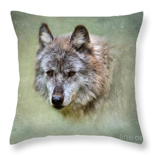Wolf Throw Pillow featuring the photograph Grey Wolf Portrait by Louise Heusinkveld
