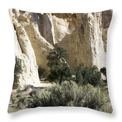 Bronstein Throw Pillow featuring the photograph Grosvenor by Sandra Bronstein