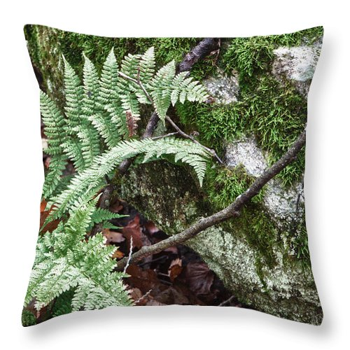 Virginia Throw Pillow featuring the photograph Ground Foliage Near Mountain Lake by James Woody