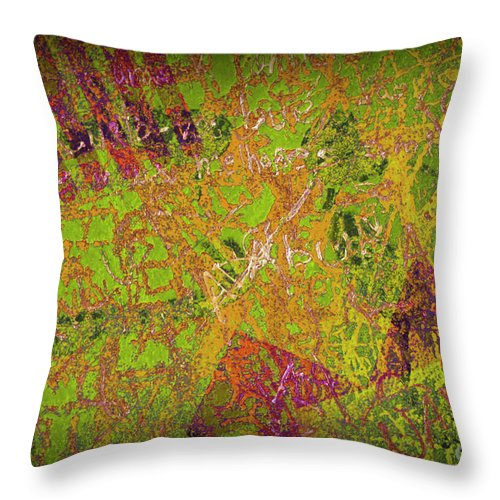 Abstract Throw Pillow featuring the photograph Grunge Background 4 by Carlos Caetano