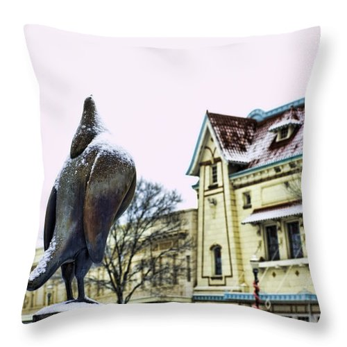 Washington State Throw Pillow featuring the photograph Guard Pigeon And Liberty Theater by Dan McManus