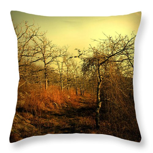 Luminism Throw Pillow featuring the photograph Guide Our Path by Nina Fosdick