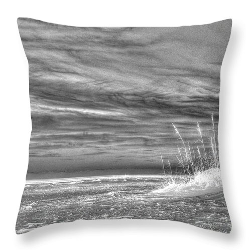Florida Throw Pillow featuring the photograph Gulf Breeze by Anthony Wilkening